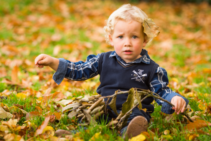 blonde boy in navy jumper sitting on field surrounded by yellow leaves