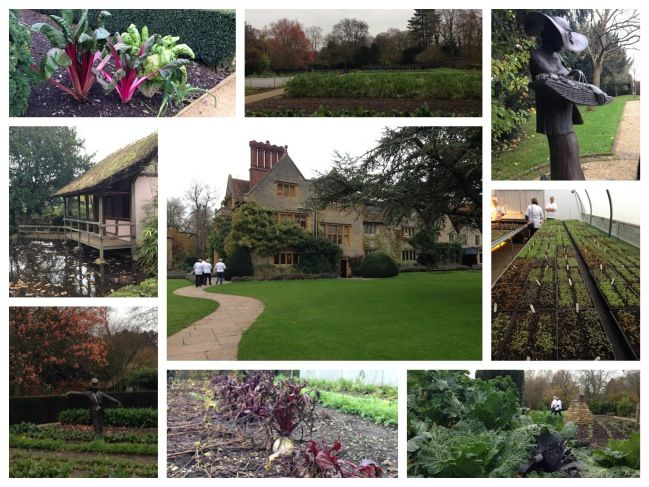 le manoir kitchen garden