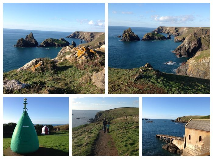 lizard point collage
