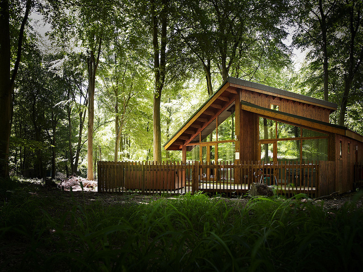forest-holidays-big-cabin