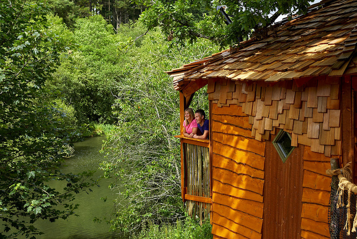 forest holidays treehouse view over lake