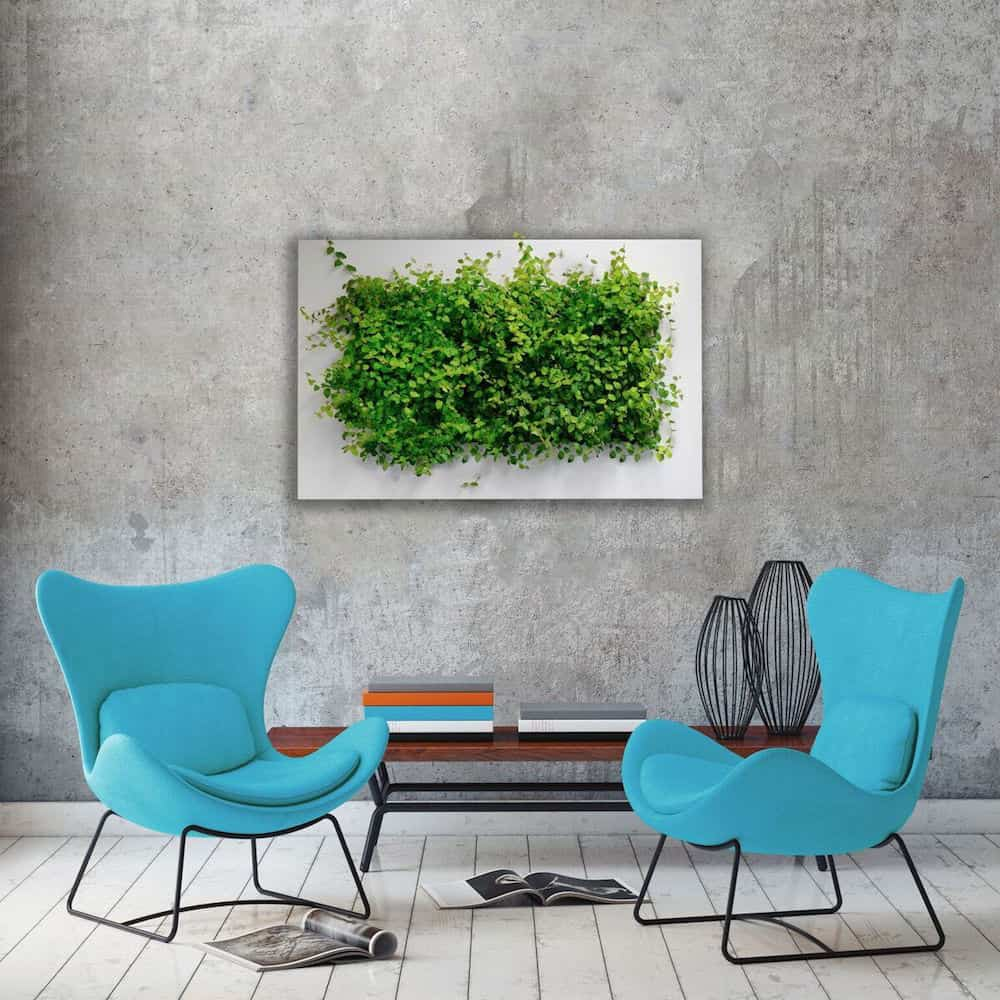 plant artwork on wall blue chairs