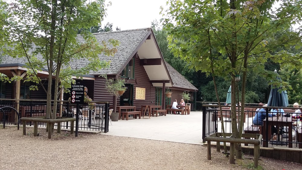 log cabin cafe amongst a wood