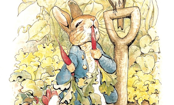 Peter rabbit illustration eating radishes in garden