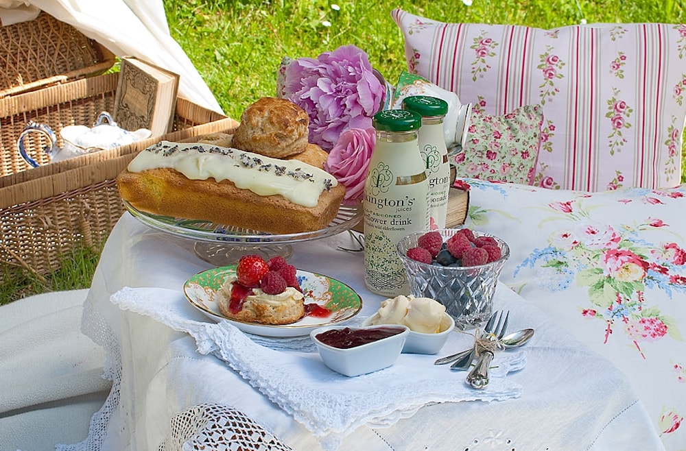 picnic basket cushions cake berries jam scone on grass