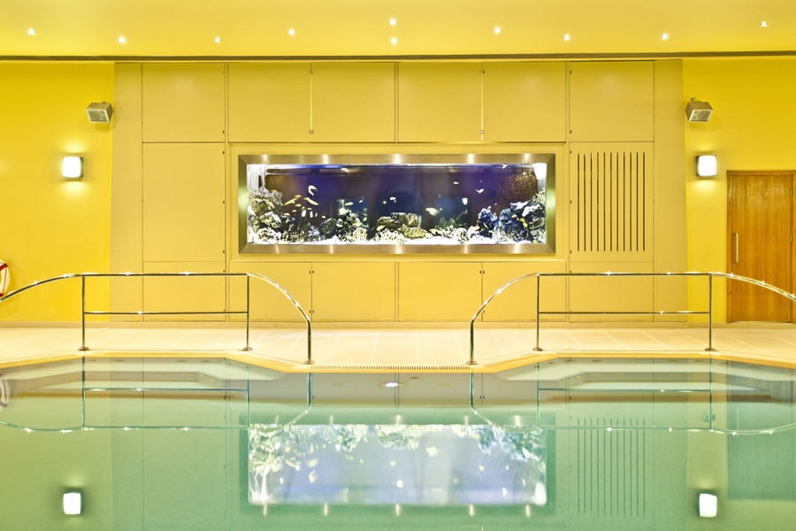 aquarium in a bright yellow wall of a swimming pool