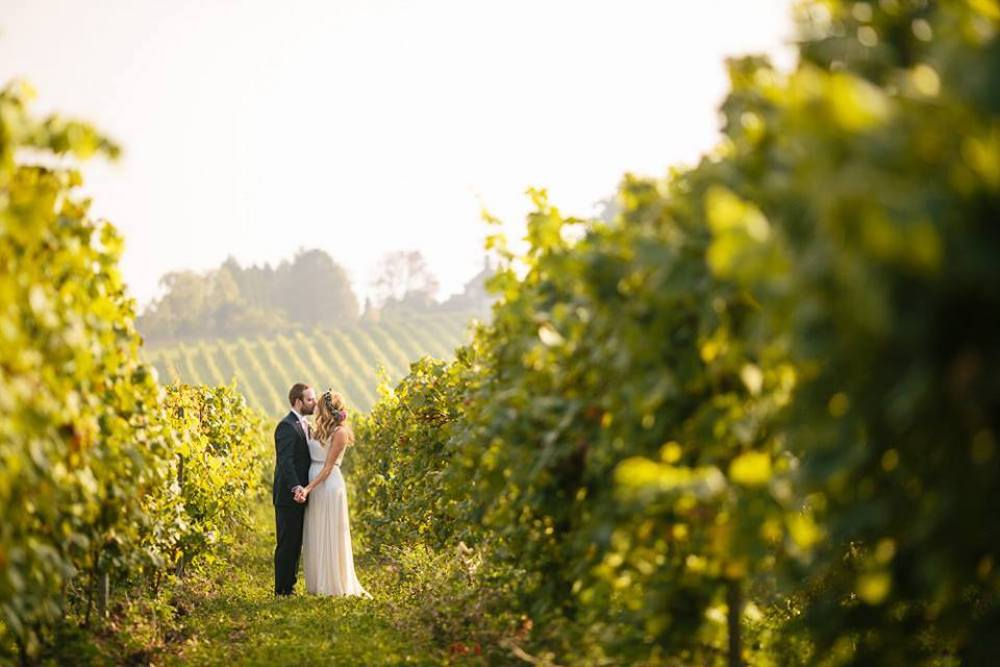 bride and groom kissing in vineyard with rolling hills in background