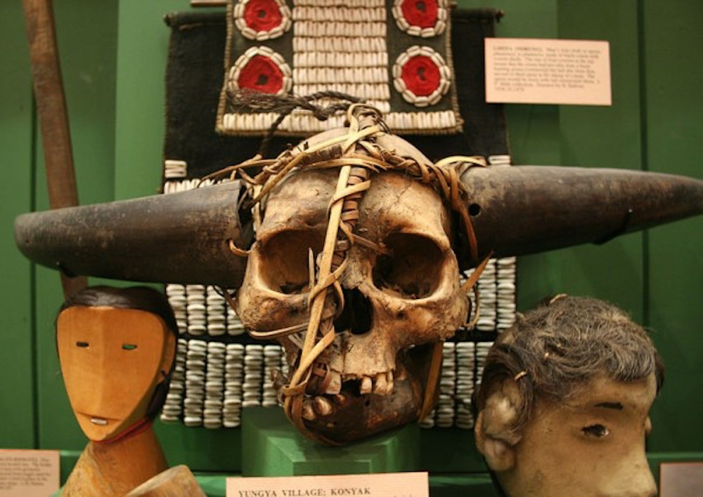 skull with horns and rope part of museum exhibition