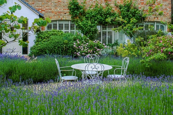 Oxfordshire gardener white outdoor chair tables amongst tall grass lilac flowers
