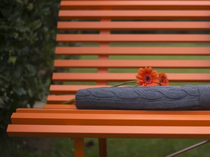 orange bench rosara flower outside