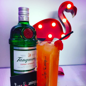 tipsy flamingo gin and tonic